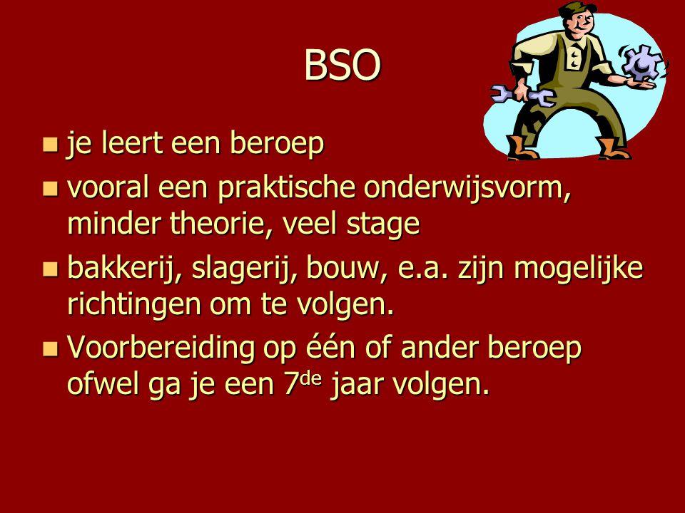 BSO je leert een beroep. vooral een praktische onderwijsvorm, minder theorie, veel stage.