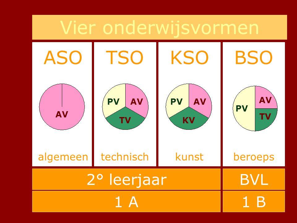 Vier onderwijsvormen ASO TSO KSO BSO 2° leerjaar BVL 1 A 1 B algemeen