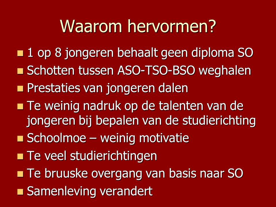 Waarom hervormen 1 op 8 jongeren behaalt geen diploma SO