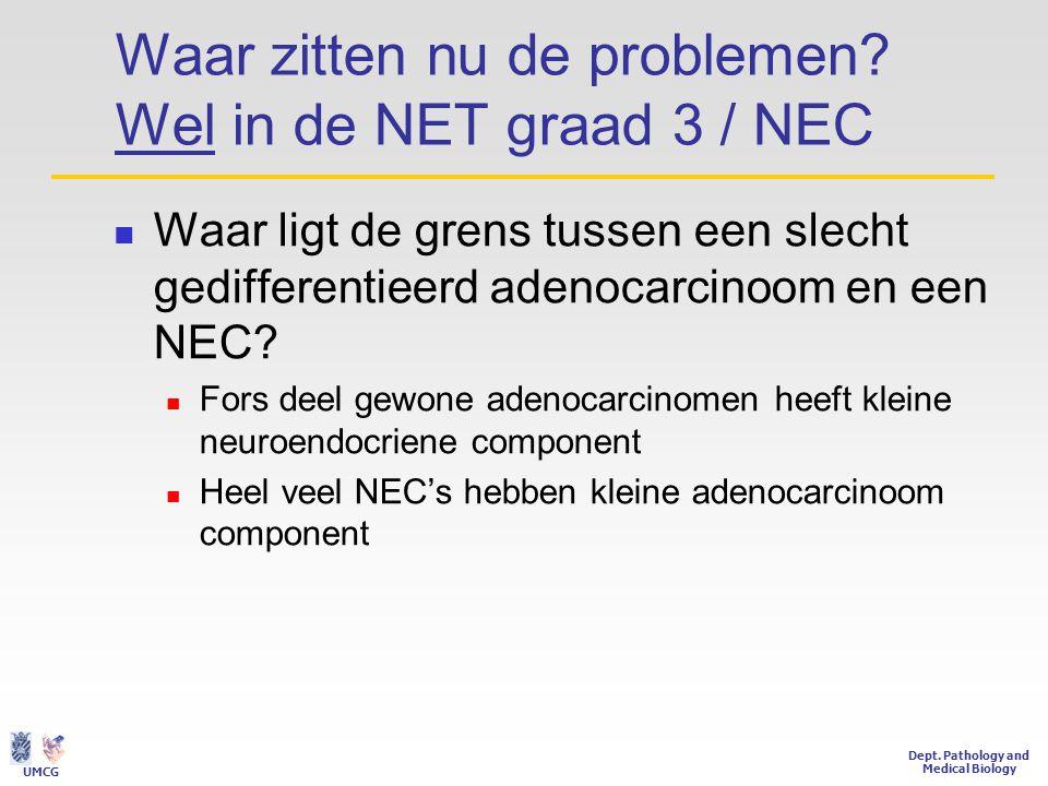 Waar zitten nu de problemen Wel in de NET graad 3 / NEC