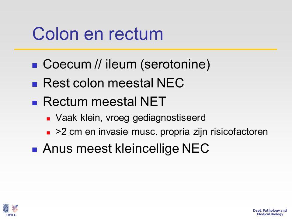 Colon en rectum Coecum // ileum (serotonine) Rest colon meestal NEC