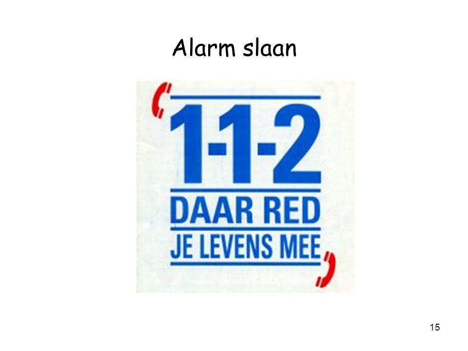 Alarm slaan