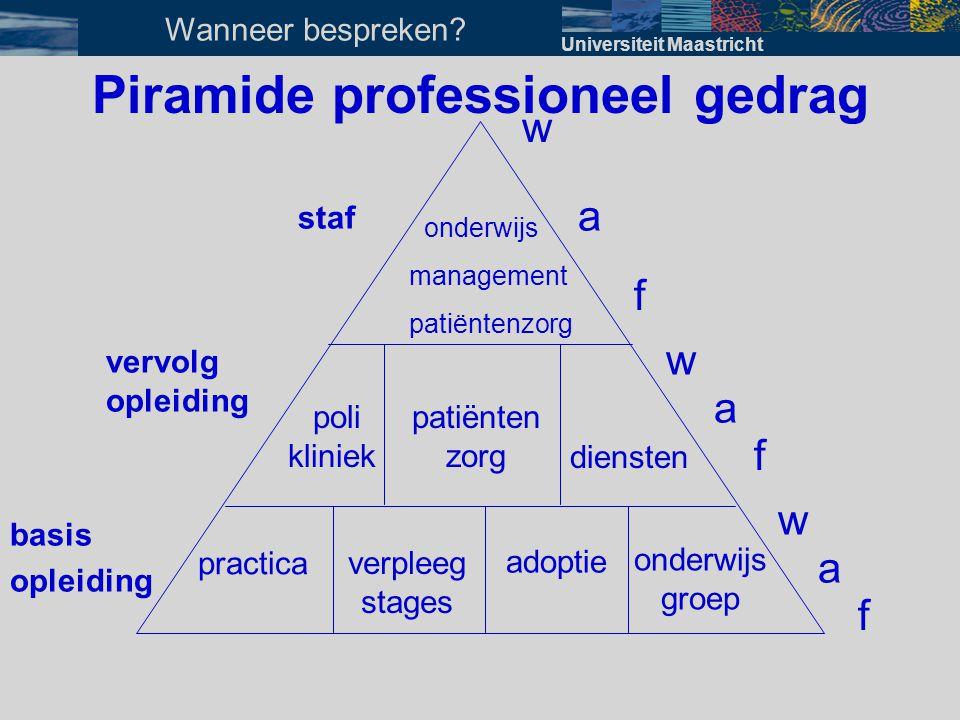 Piramide professioneel gedrag