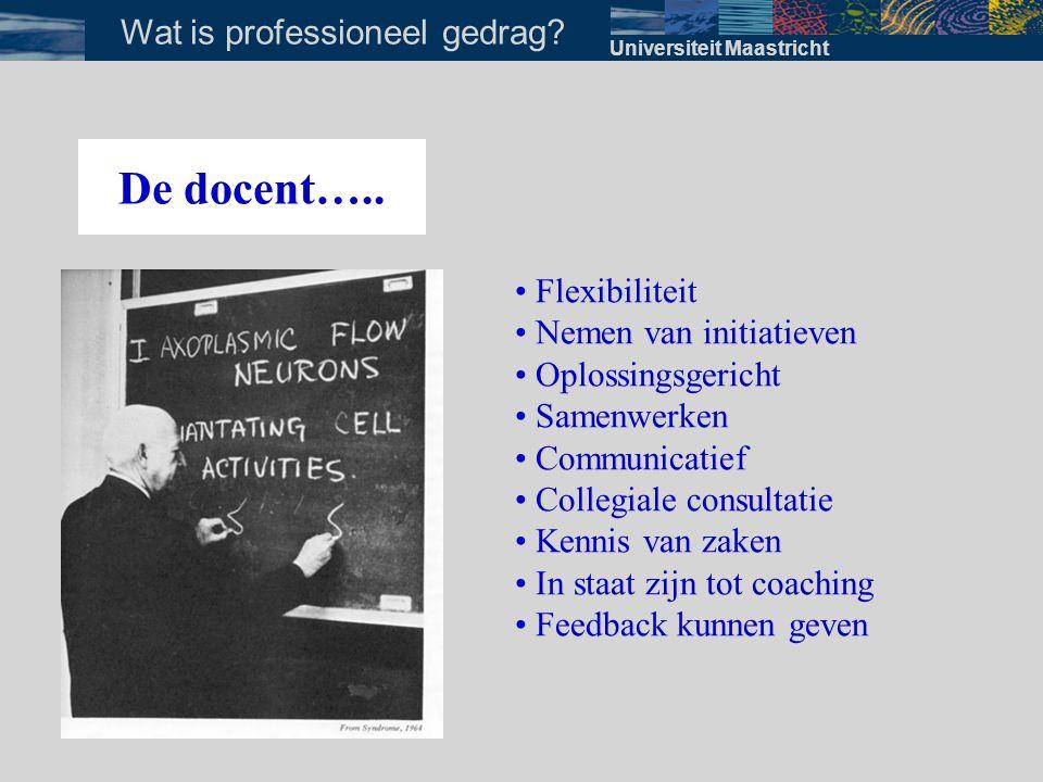 Wat is professioneel gedrag