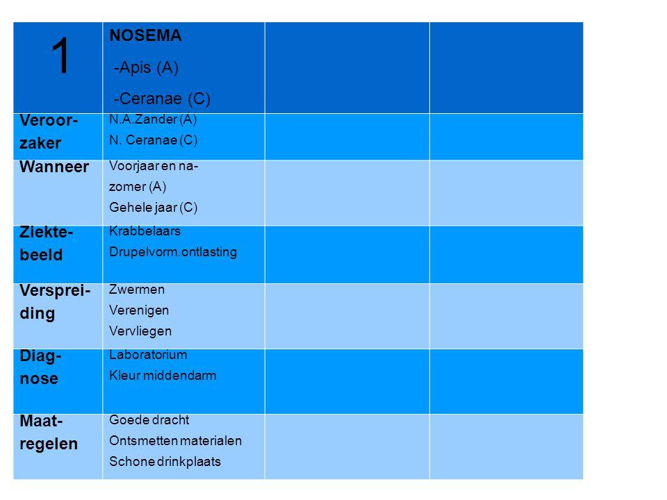 1 NOSEMA -Apis (A) -Ceranae (C) Veroor- zaker Wanneer Ziekte- beeld
