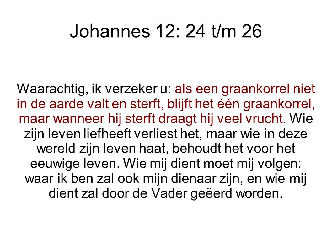 Johannes 12: 24 t/m 26