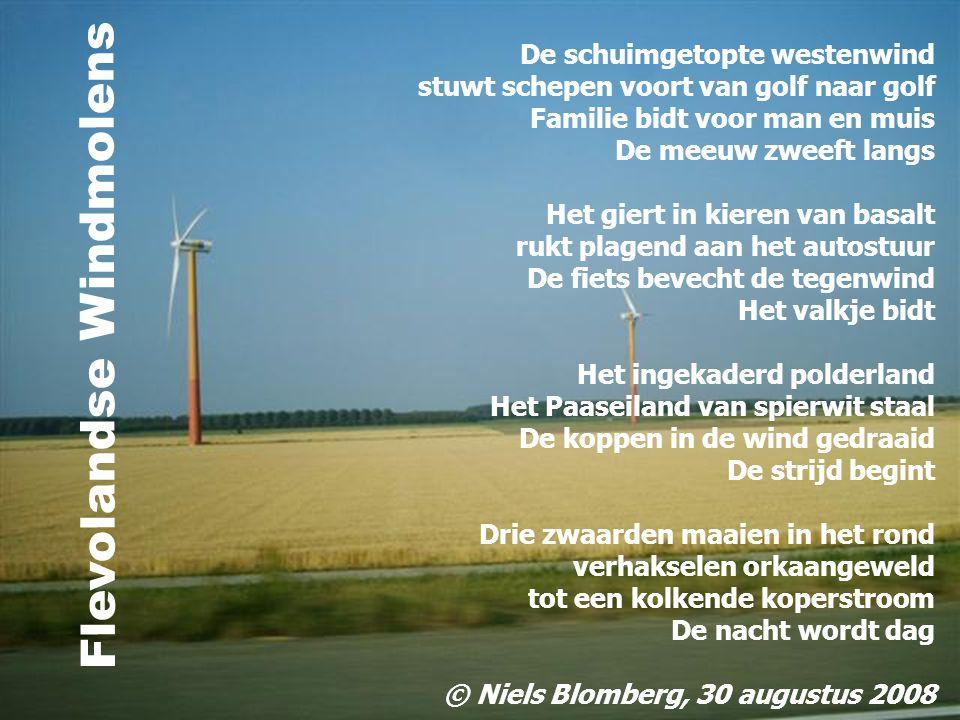Flevolandse Windmolens
