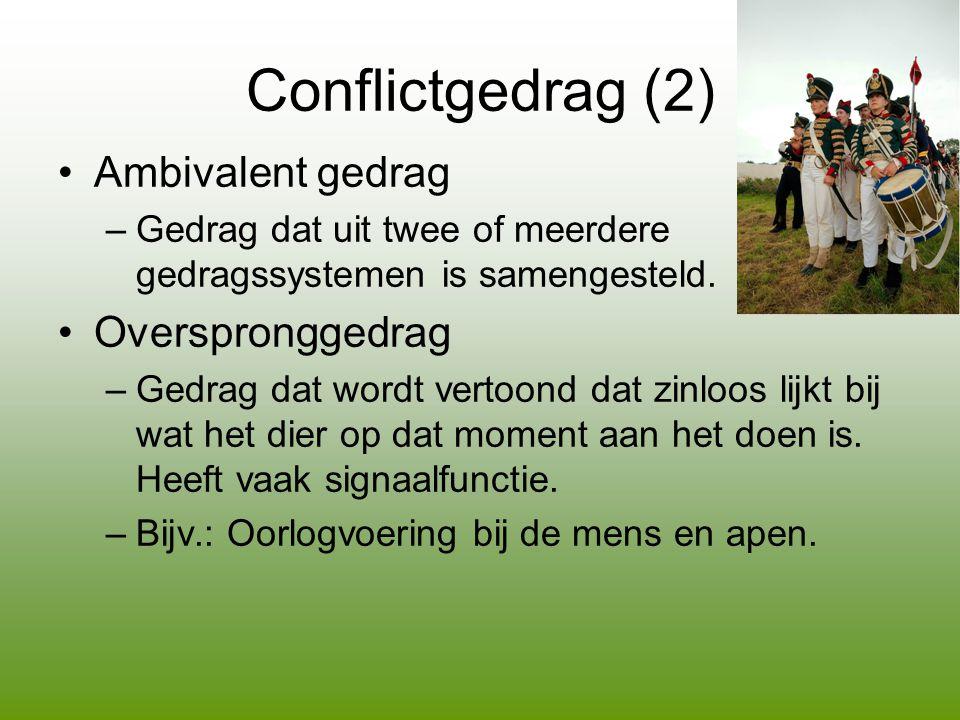 Conflictgedrag (2) Ambivalent gedrag Overspronggedrag