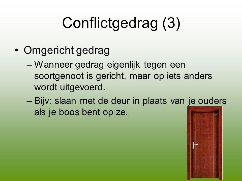 Conflictgedrag (3) Omgericht gedrag