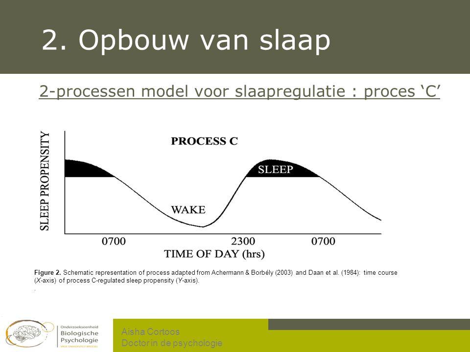 2. Opbouw van slaap 2-processen model voor slaapregulatie : proces 'C'