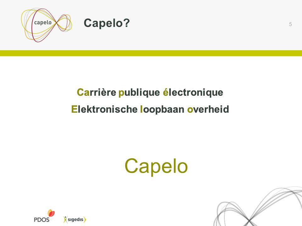 Capelo Capelo Carrière publique électronique