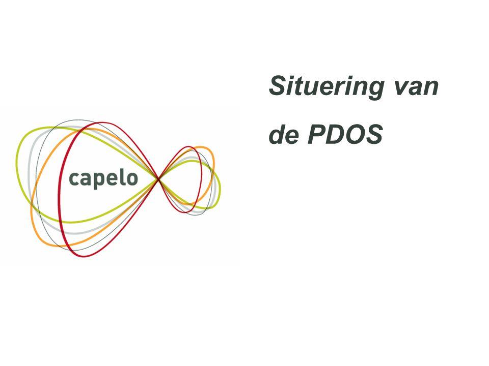 Situering van de PDOS