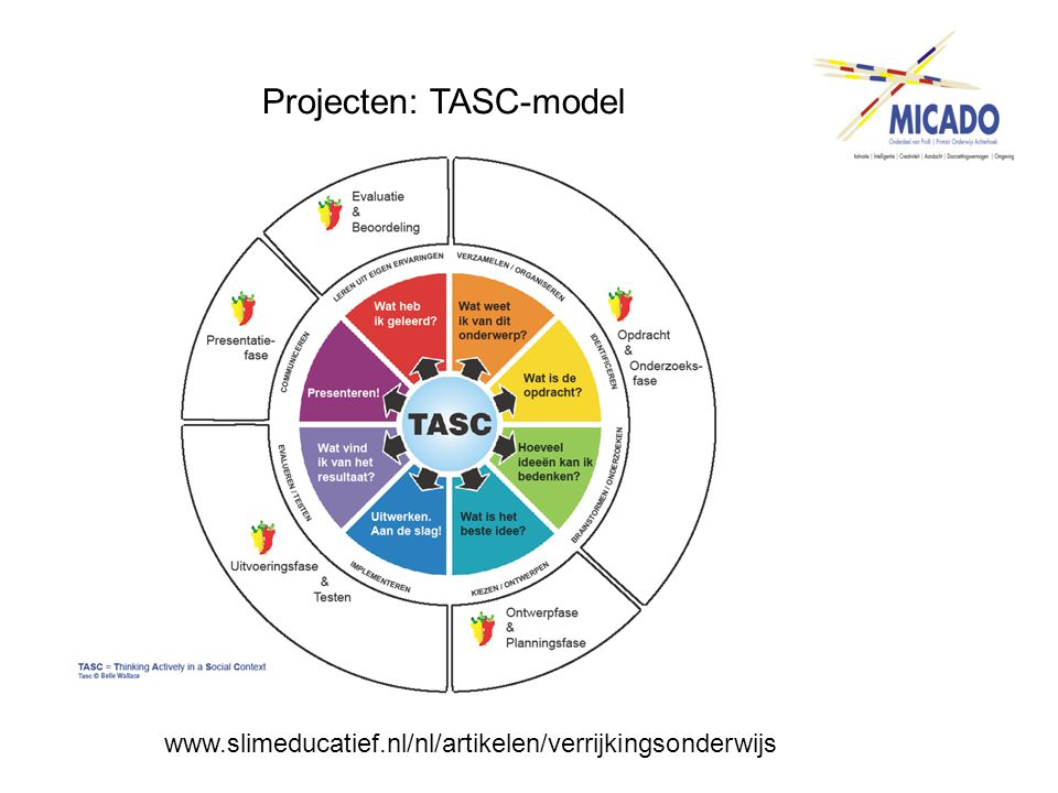 Projecten: TASC-model