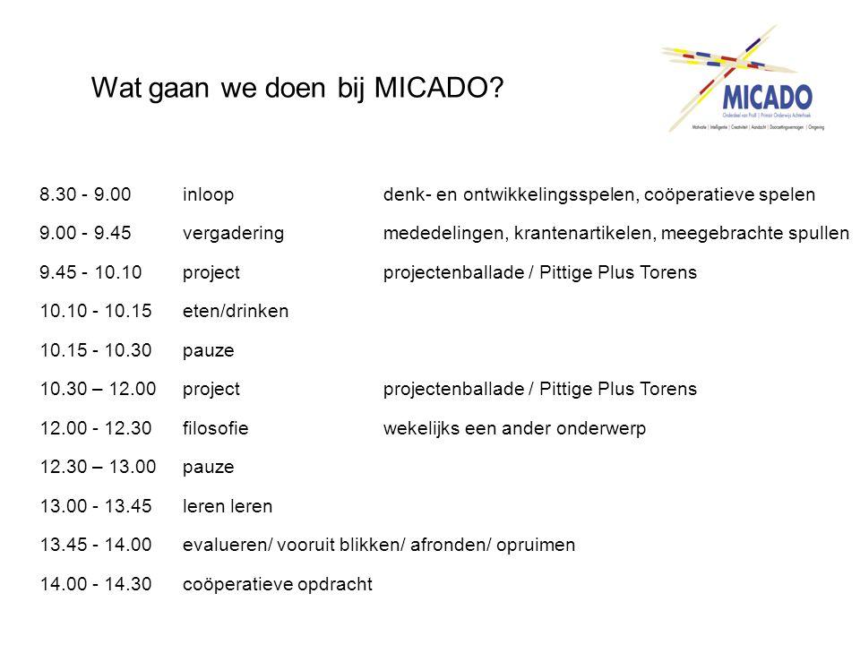 Wat gaan we doen bij MICADO