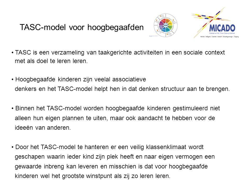 TASC-model voor hoogbegaafden