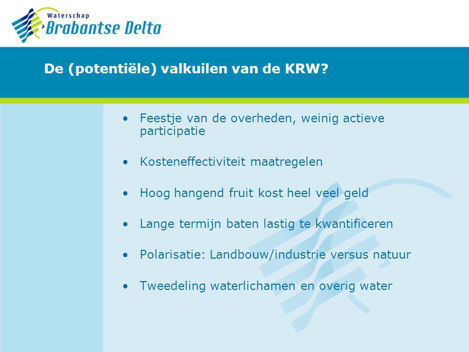 De (potentiële) valkuilen van de KRW
