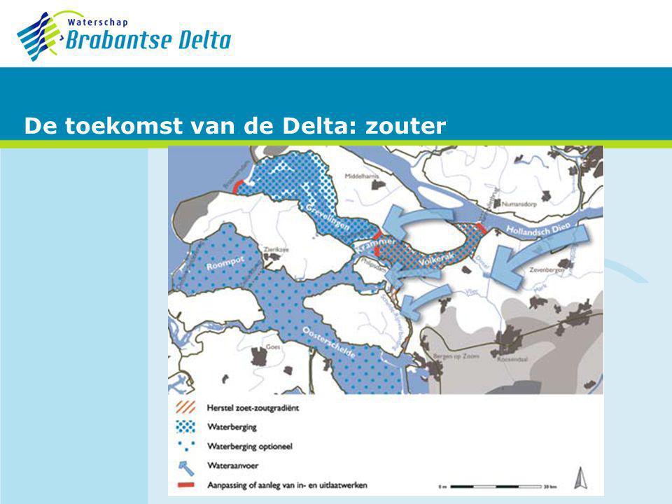 De toekomst van de Delta: zouter
