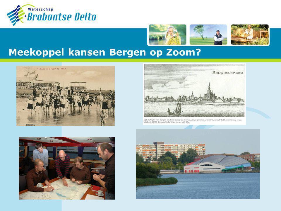 Meekoppel kansen Bergen op Zoom