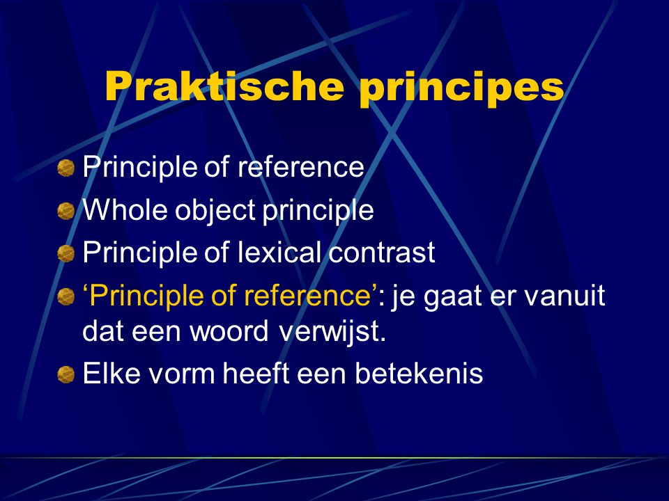 Praktische principes Principle of reference Whole object principle