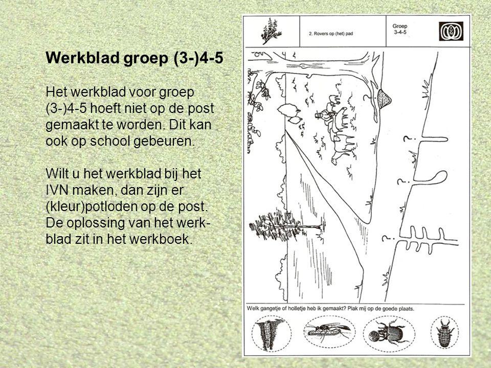 Werkblad groep (3-)4-5