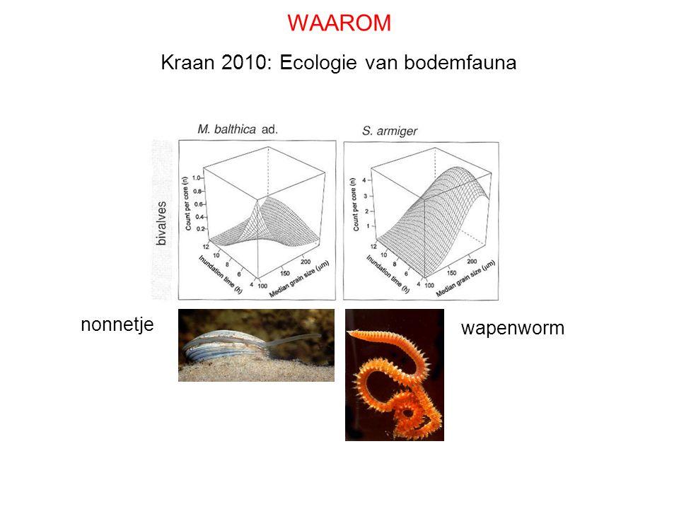 WAAROM Kraan 2010: Ecologie van bodemfauna nonnetje wapenworm