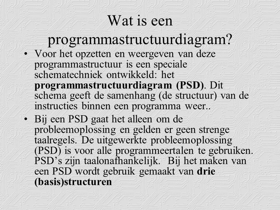 Wat is een programmastructuurdiagram