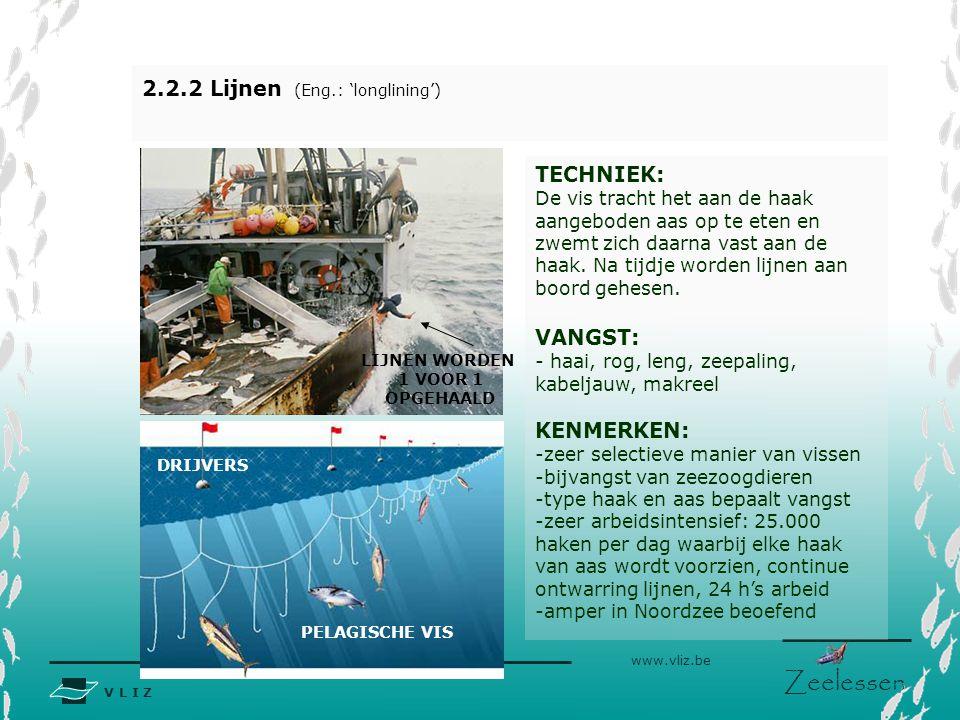 2.2.2 Lijnen (Eng.: 'longlining')