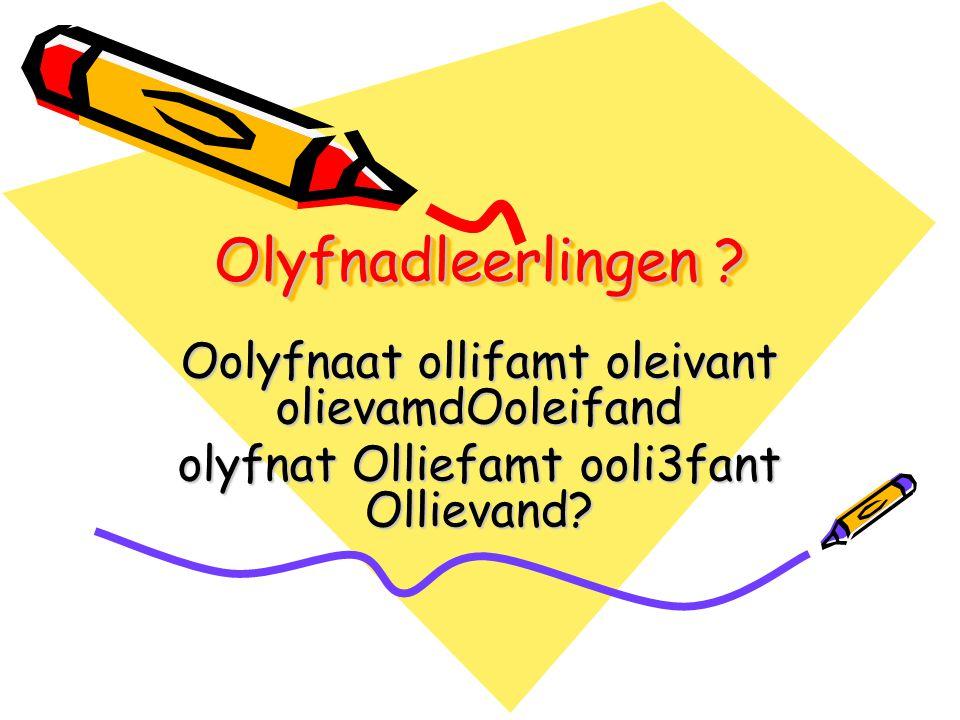 Olyfnadleerlingen Oolyfnaat ollifamt oleivant olievamdOoleifand