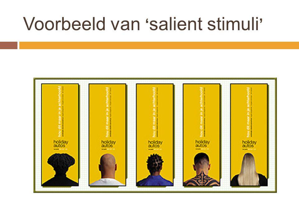 Voorbeeld van 'salient stimuli'