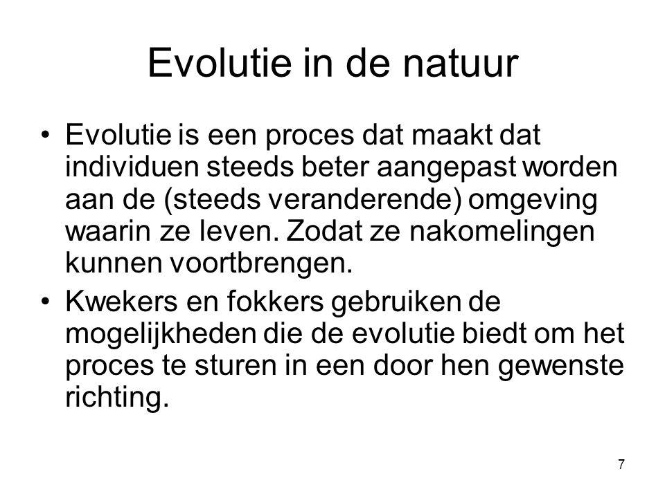 Evolutie in de natuur
