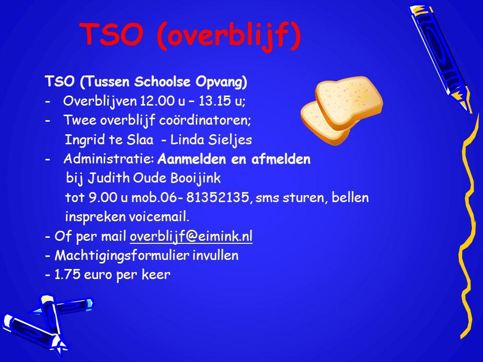 TSO (overblijf) TSO (Tussen Schoolse Opvang)