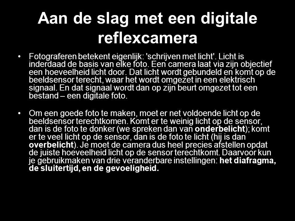 Aan de slag met een digitale reflexcamera