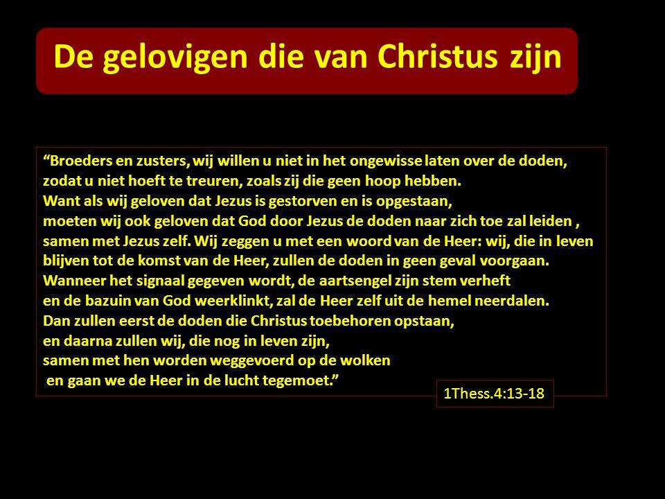 De gelovigen die van Christus zijn