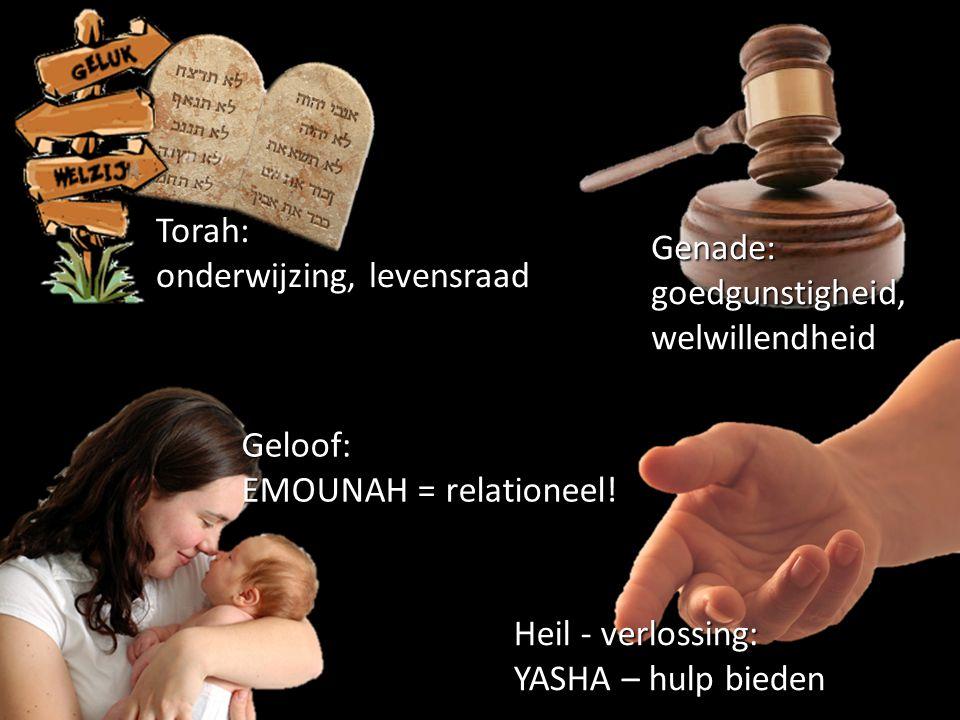Torah: onderwijzing, levensraad. Genade: goedgunstigheid, welwillendheid. Geloof: EMOUNAH = relationeel!
