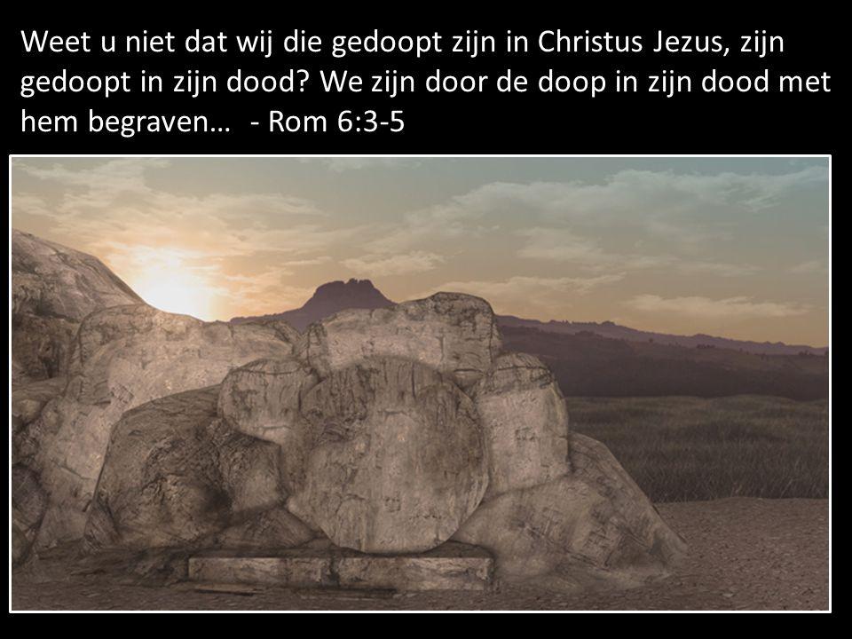 Weet u niet dat wij die gedoopt zijn in Christus Jezus, zijn gedoopt in zijn dood.