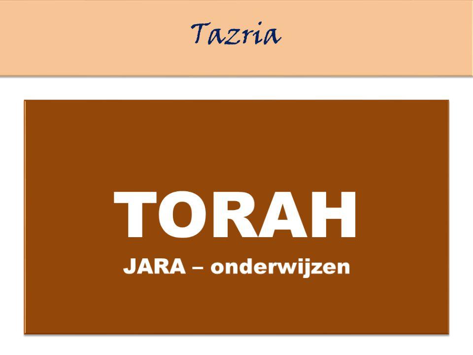 TORAH Tazria JARA – onderwijzen Deze woorden die Ik je opdraag