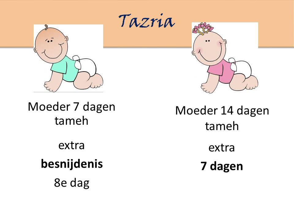 Tazria Moeder 7 dagen tameh Moeder 14 dagen tameh extra extra