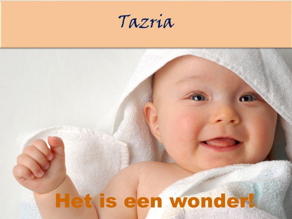 Tazria Het is een wonder!