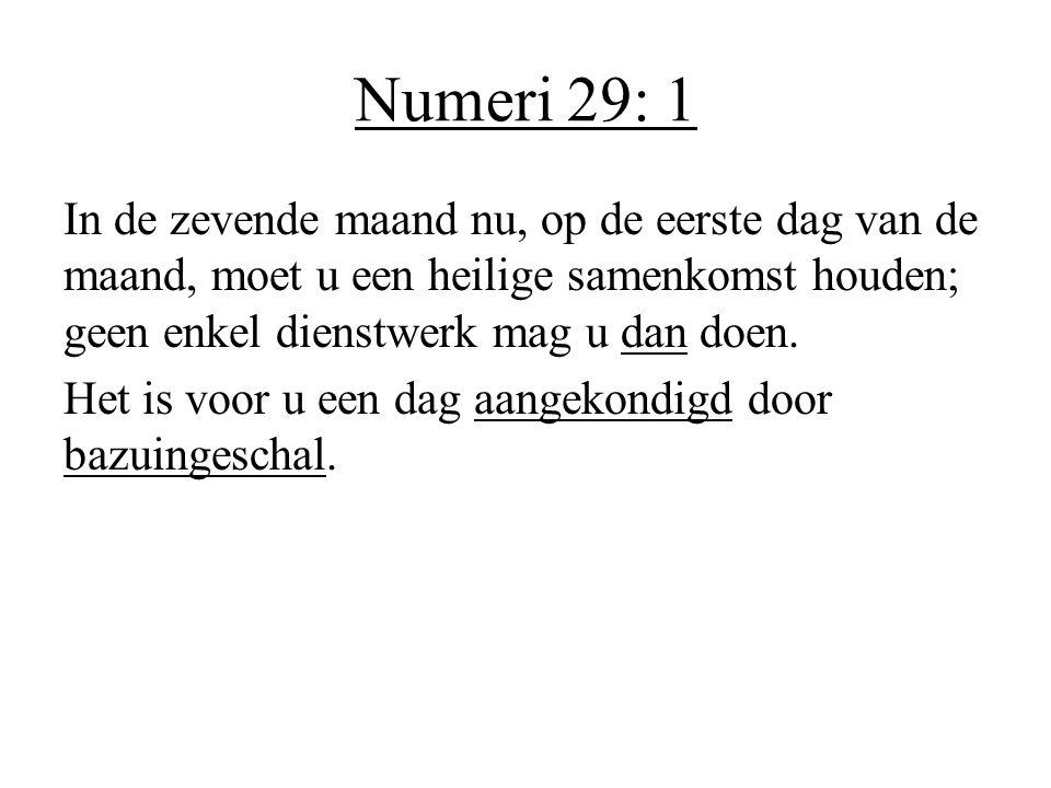 Numeri 29: 1
