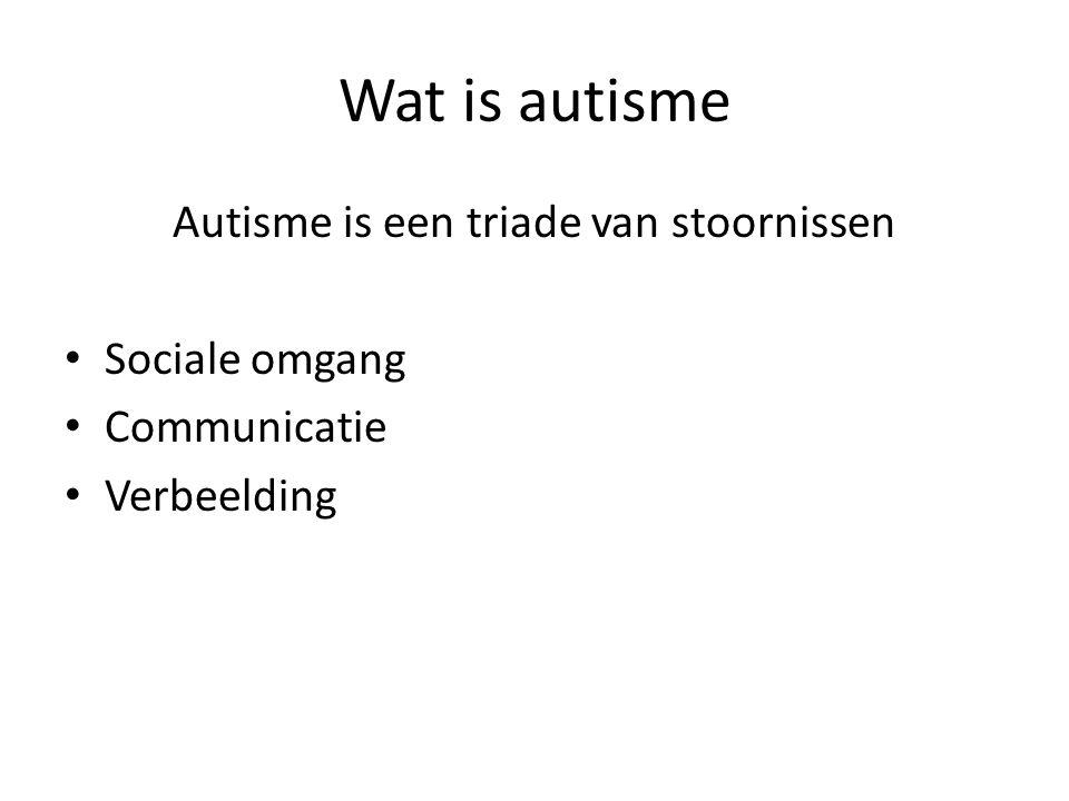 Autisme is een triade van stoornissen