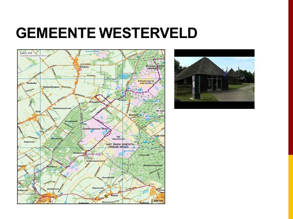 Gemeente westerveld