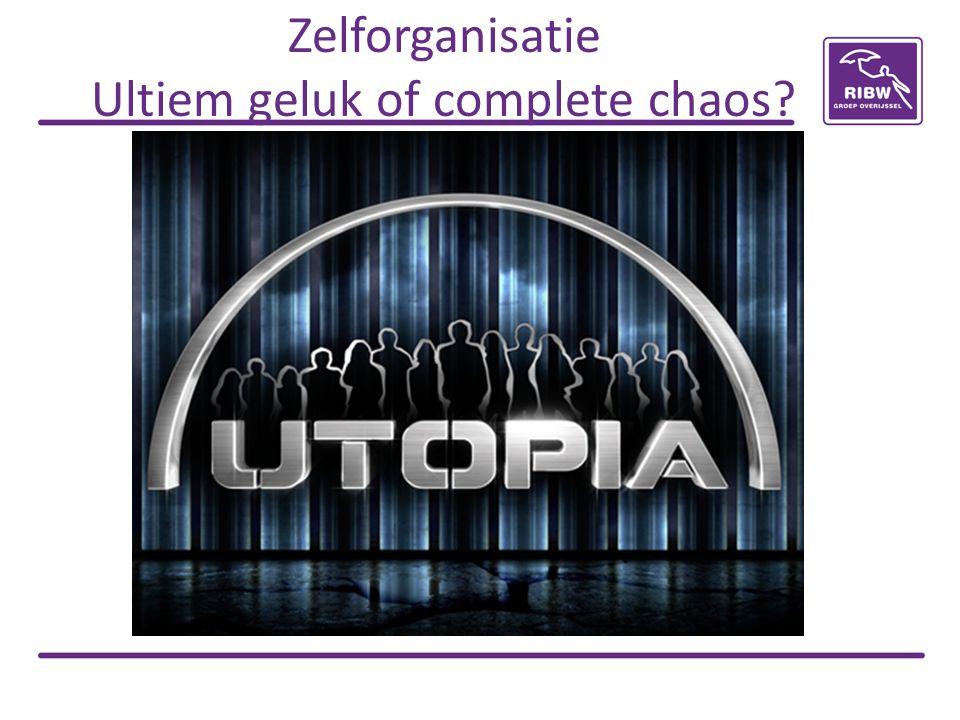 Zelforganisatie Ultiem geluk of complete chaos