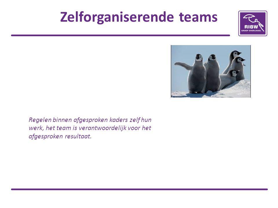 Zelforganiserende teams