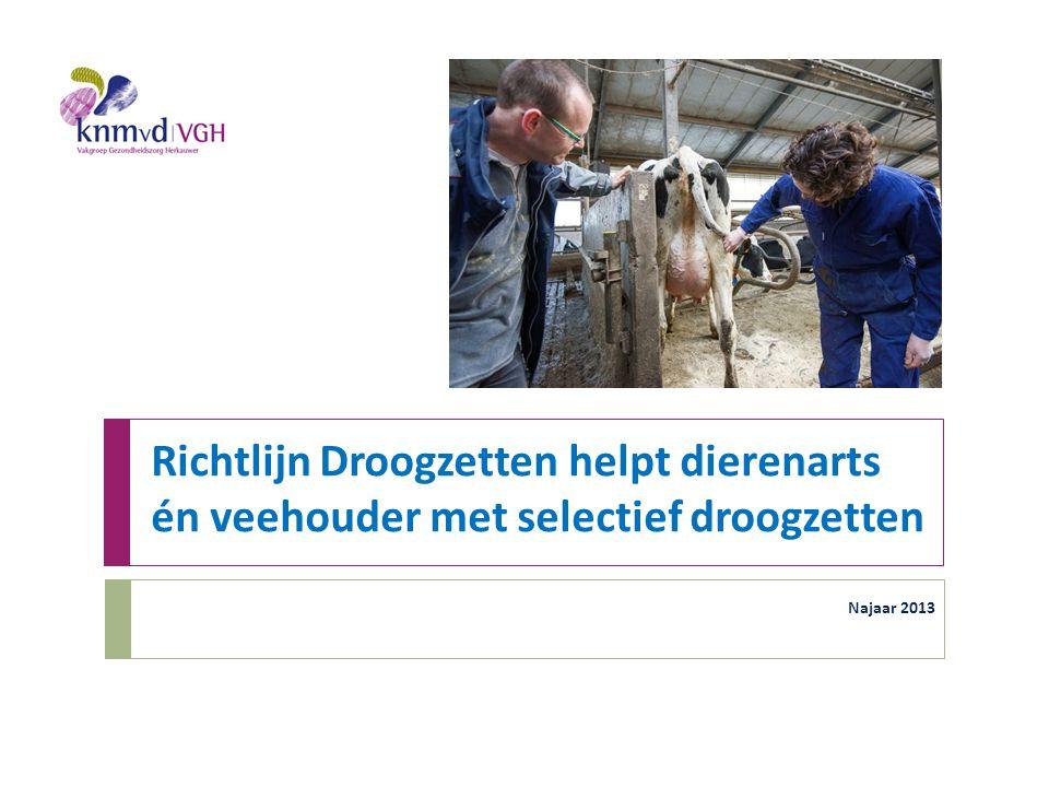 Richtlijn Droogzetten helpt dierenarts én veehouder met selectief droogzetten