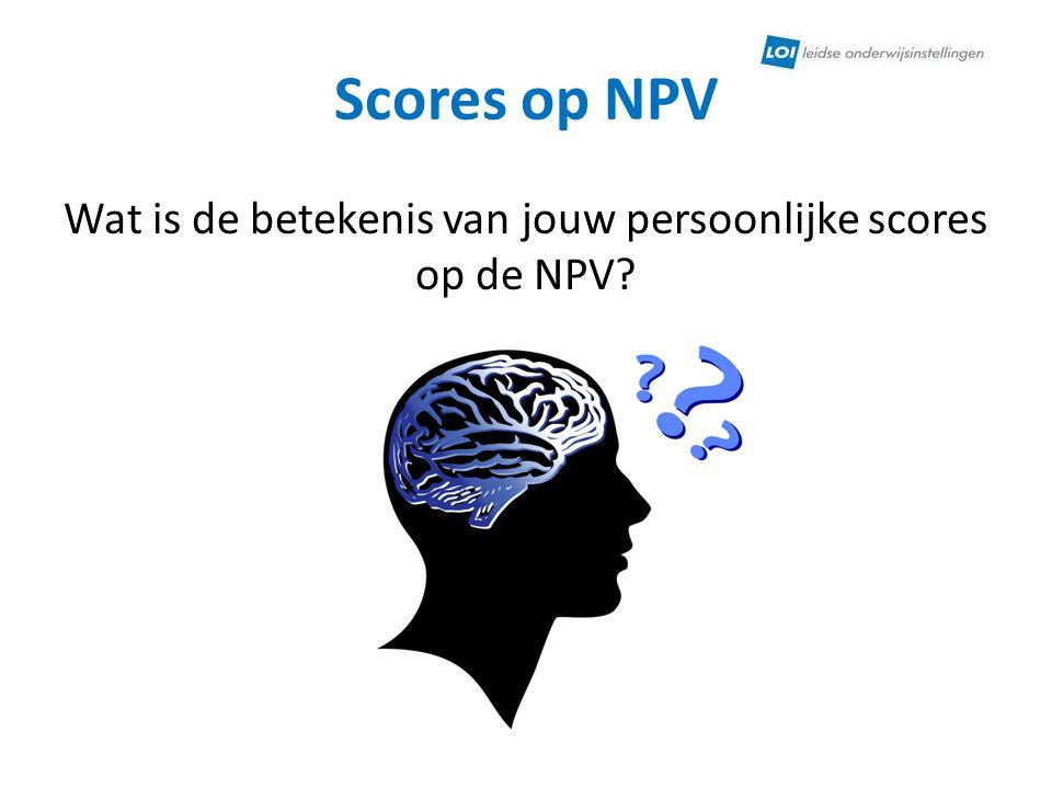 Wat is de betekenis van jouw persoonlijke scores op de NPV