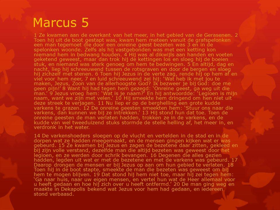 Marcus 5