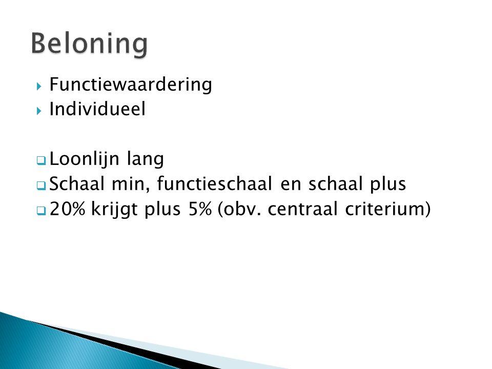 Beloning Functiewaardering Individueel Loonlijn lang