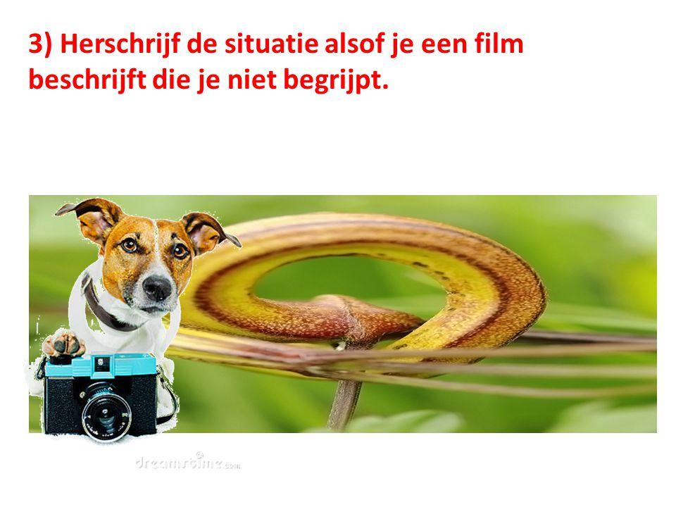 3) Herschrijf de situatie alsof je een film beschrijft die je niet begrijpt.