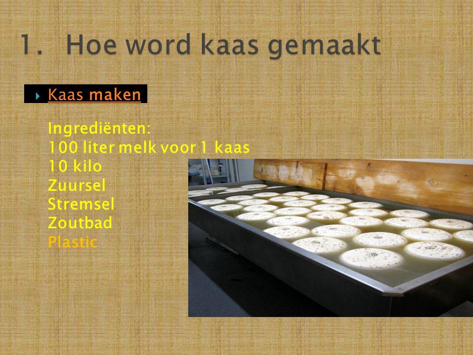 1. Hoe word kaas gemaakt Kaas maken Ingrediënten: