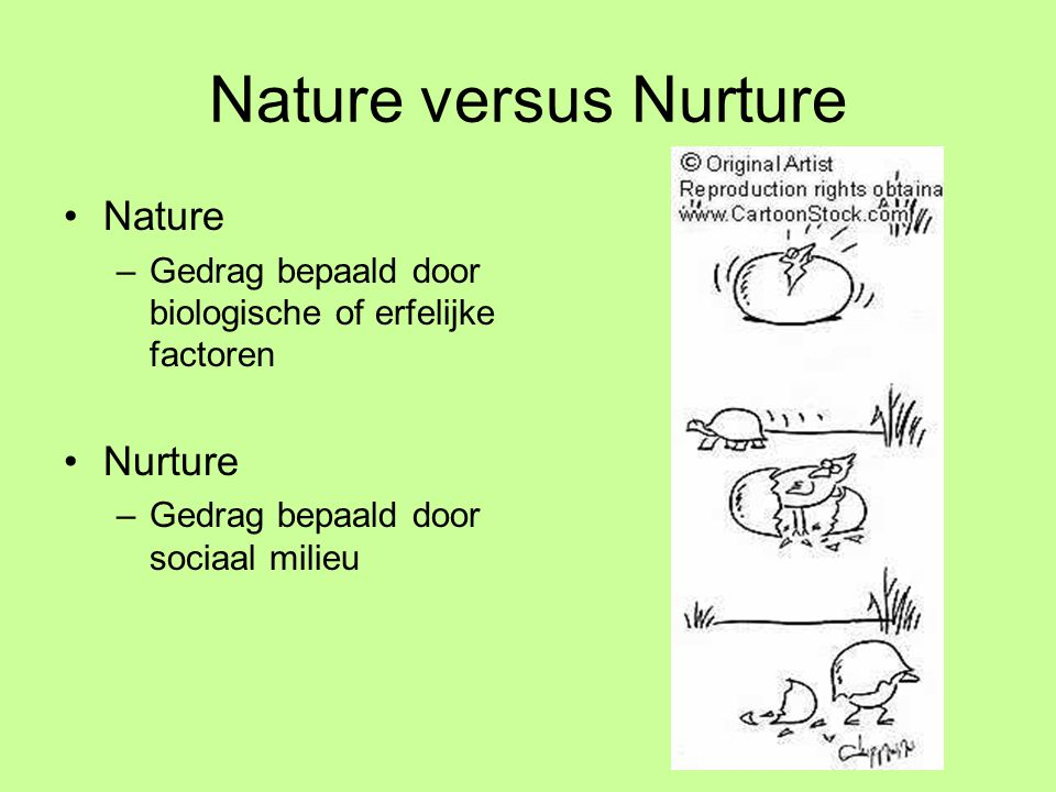 Nature versus Nurture Nature Nurture